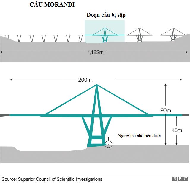 Cầu Morandi được xây dựng từ những năm 1960 và mới được tu sửa cách đây 2 năm. (Đồ họa: BBC)