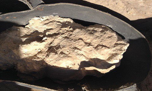 Phô mai 3.200 năm chứa vi khuẩn chết người trong ngôi mộ Ai Cập - Ảnh 2.