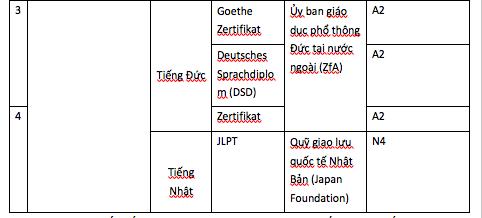 Đà Nẵng: Công nhận điểm 10 Ngoại ngữ cho HS thi vào lớp 10 có chứng chỉ quốc tế - 3