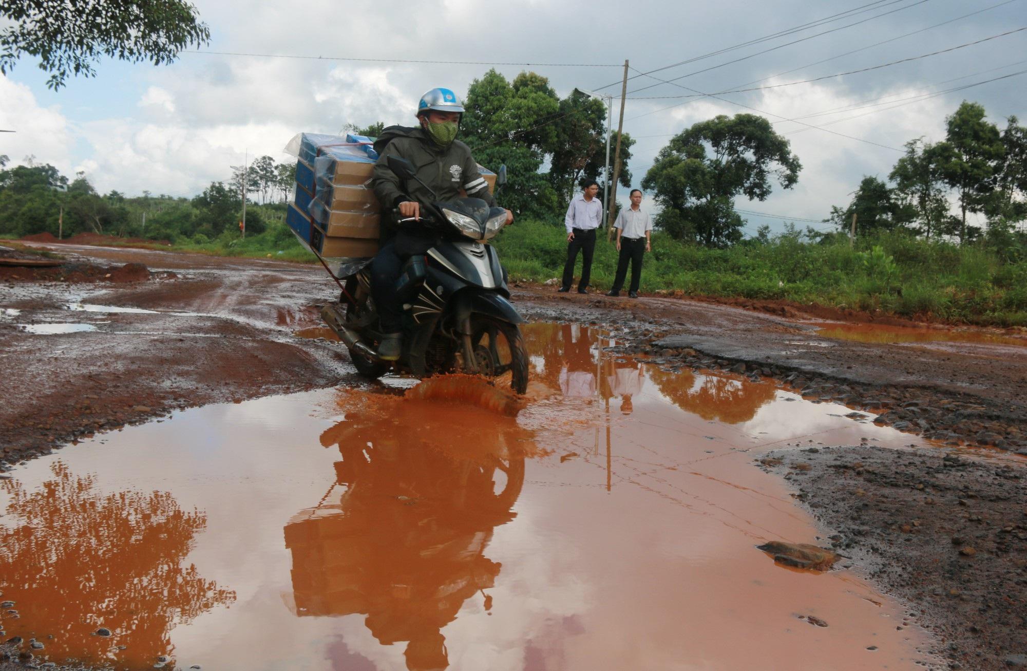Hàng ngàn ổ trâu ổ voi nằm chằng chịt trên đường