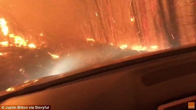 Ngọn lửa cháy dữ dội khi 2 cha con Bilton lái xe xuyên qua khu rừng (Ảnh: Storyful)