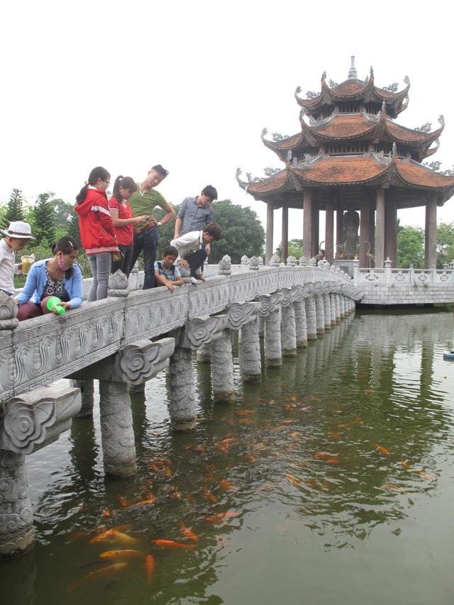 Mỗi khi có người đứng trên cầu đá là đàn cá hàng trăm con lại nhao lên mặt nước hóng quà bim bim. Ảnh: Phương Đông.(Ảnh: Dân Việt)