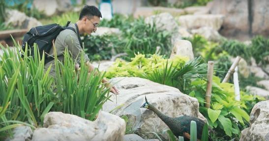 Những trải nghiệm khó quên của thí sinh Phan Huy Đăng tại Vinpearl với bài dự thi Hành Trình Kẻ Mộng Mơ