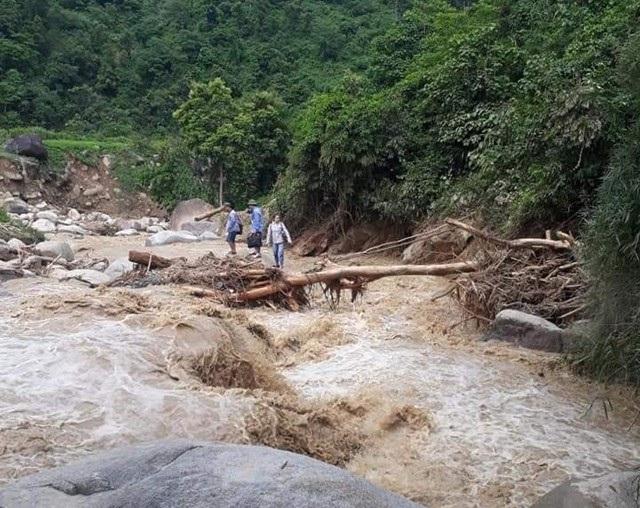 Mạo hiểm đi trên chiếc cầu tạm bằng thân cây để vượt qua suối dữ