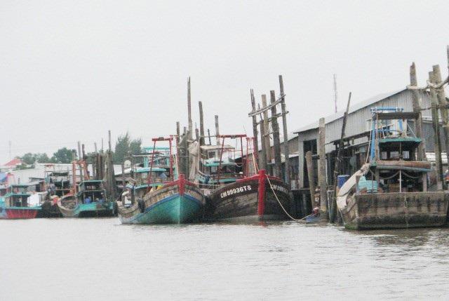 Sở Nông nghiệp Cà Mau xin cử cán bộ đi học tập quản lý tàu cá ở Thái Lan. (Ảnh minh họa)