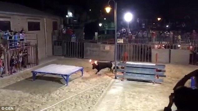 Con bò tót nổi điên sau khi bị châm lửa lên sừng