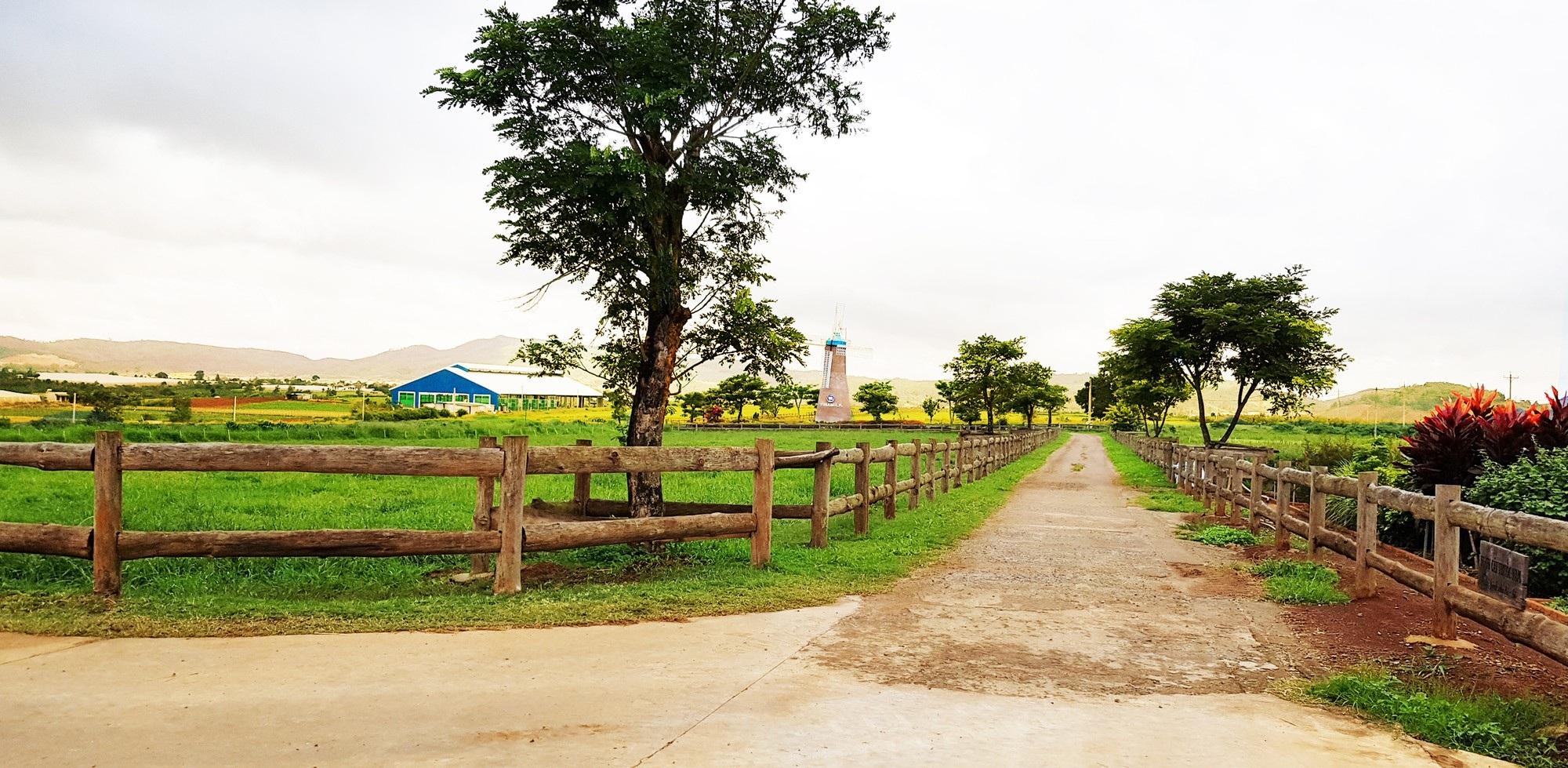 Hình ảnh trang trại organic đầu tiên của Việt Nam được Vinamilk khánh thành vào tháng 03/2017