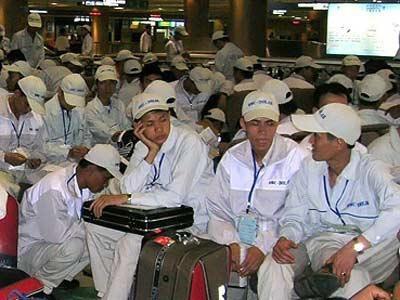 Cơ hội việc làm cho lao động trở về từ Hàn Quốc, Nhật Bản - 1