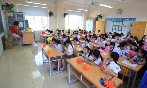 Năm học này, trường tiểu học Chu Văn An có 23 lớp 1 với 1.145 học sinh.