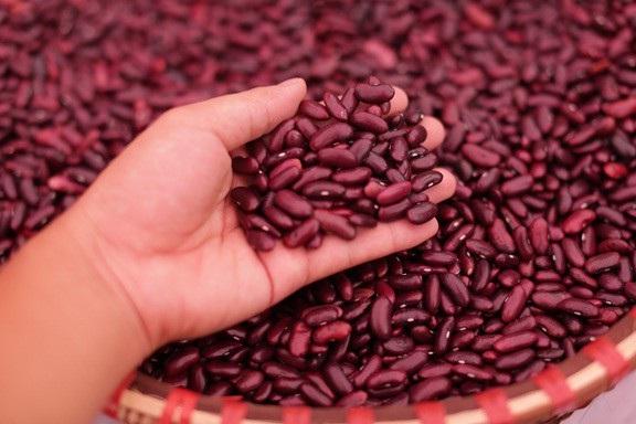 Tất cả các nguyên liệu đầu vào để sản xuất các sản phẩm của Minh Trung đều được tuyển chọn kĩ lưỡng, đảm bảo dinh dưỡng và các chỉ tiêu chất lượng để tạo ra những sản phẩm tuyệt hảo.
