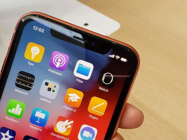 Còn trên iPhone XR, mặt trước của máy với cụm tai thỏ của iPhone X...