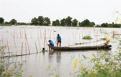 Trải nghiệm mùa nước nổi ở đồng bằng sông Cửu Long - 1