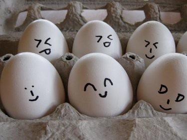 10 sự thật bạn chưa biết về trứng gà - 6