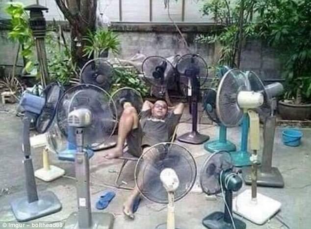 1001 cách chống nóng khiến bạn không thể nhịn cười - 6