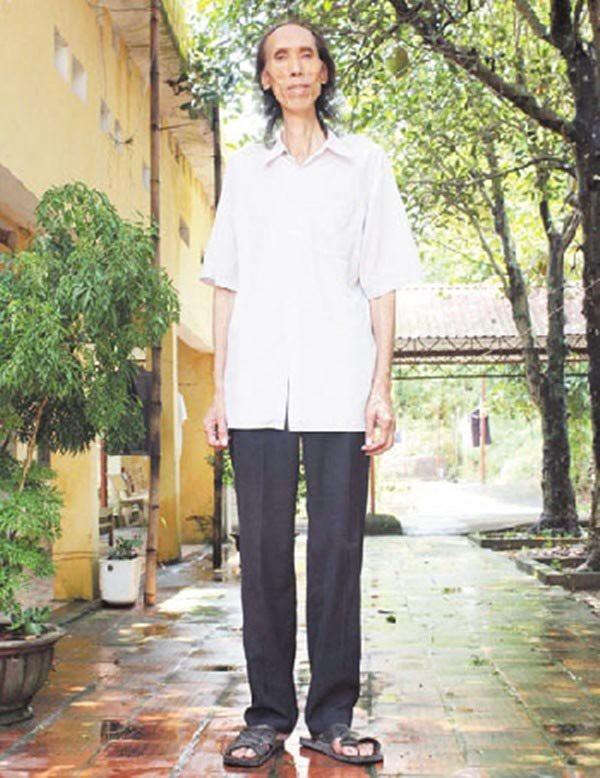 Ông Trần Thành Phố sinh năm 1947 có chiều cao lên tới hơn 2,28m, nặng 115kg