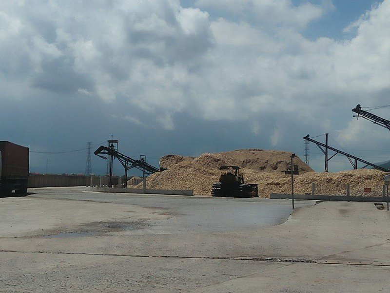 Dân kêu cứu vì khổ sở với hai nhà máy chế biến gỗ dăm tại Quảng Bình! - Ảnh 3.