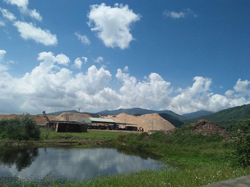 Dân kêu cứu vì khổ sở với hai nhà máy chế biến gỗ dăm tại Quảng Bình! - Ảnh 4.