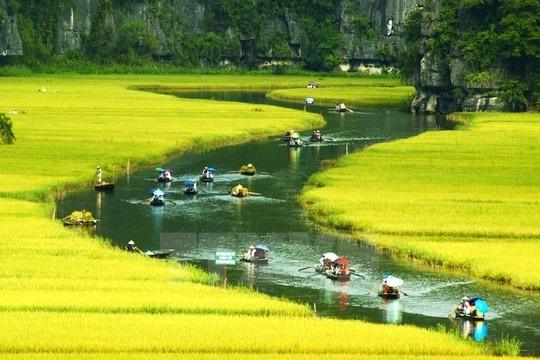 Đến Tràng An mùa này du khách sẽ có cơ hội ngắm thung lũng mùa vàng (mùa lúa chín), chèo thuyền trên suối.