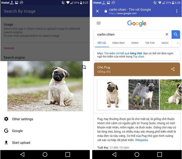 """Ứng dụng nhận diện được chú chó trong hình ảnh cần tìm kiếm là """"Chó Pug"""""""