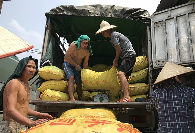 Hoạt động bốc dỡ hàng hóa ở chợ Long Biên