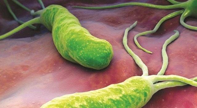 Tại Hà Nội cứ 1.000 người thì có đến 700 trường hợp nhiễm vi khuẩn HP