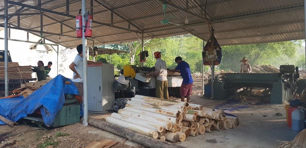 Truy trách nhiệm cán bộ để xưởng gỗ trái phép hoạt động tràn lan tại Nghệ An! - Ảnh 3.