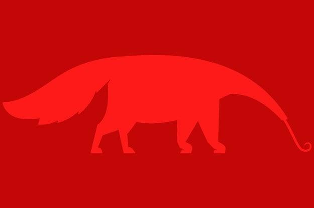 Thử tài tinh mắt: Bạn nhìn thấy con vật nào trong hình? - 5