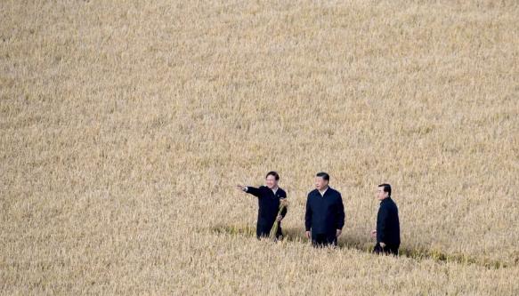 Chủ tịch Tập Cận Bình thị sát một nông trại ở Hắc Long Giang ngày 25/9 (Ảnh: Xinhua)