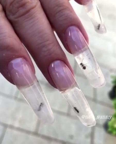 Những con kiến vẫn còn sống và bò trong móng tay
