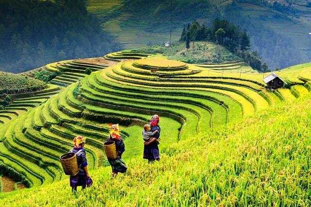15 địa điểm đẹp nhất Việt Nam, bạn đã check in được bao nhiêu nơi rồi? - 2