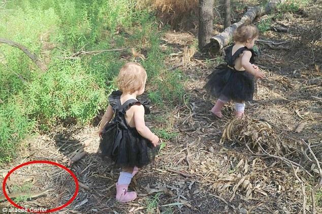 """Hình ảnh hai con gái nhỏ của Stacee đang chơi đùa, với sự xuất hiện của """"thần chết"""" ngay sát bên"""