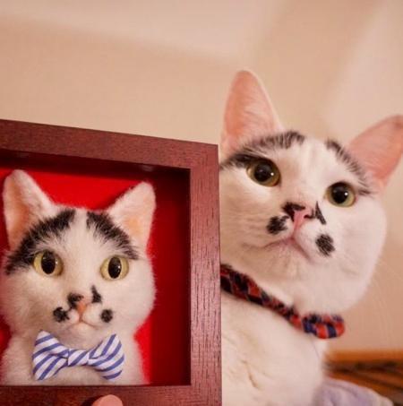 Một tác phẩm mô phỏng dựa trên chú mèo trắng