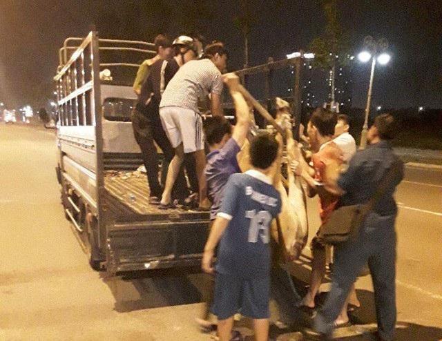 Con bò sau đó được đưa về trụ sở Công an phường Hoà Phú rồi đem đi đốt, tiêu huỷ. Trong khi ông Tân không hề được thông báo về việc này.