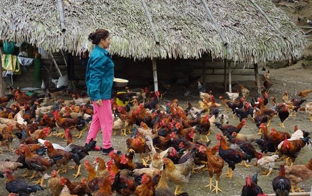 Bên cạnh đẩy mạnh tuyên truyền, nâng cao nhận thức của người dân thì tạo việc làm, giúp phụ nữ phát triển kinh tế là một trong những giải pháp nhằm ngăn chặn làn sóng di cư ngầm sang Trung Quốc của phụ nữ miền núi