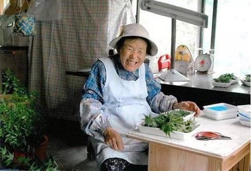 Nghề kinh doanh lá cây giúp người dân ở thị trấn Kamikatsu kiếm bộn tiền
