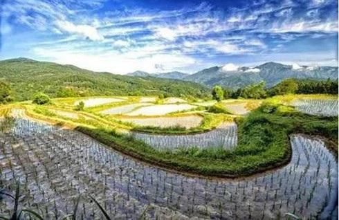 Phong cảnh của một góc thị trấn Kamikatsu