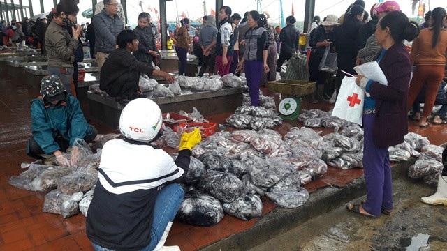 Hải sản được đóng gói, phân loại chuyển lên bờ. Ảnh: Lê Tập