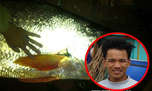 Ba lô 1,5 tỷ đồng mua con cá sủ vàng: Huyền thoại lộc trời - 12
