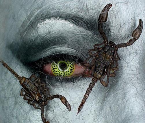 Nhiều người sợ hãi những xác côn trùng này có thể vẫn còn độc, ví dụ như xác bọ cạp