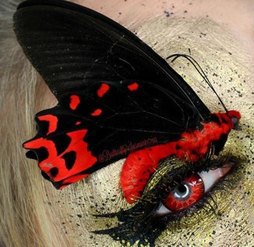 Trong mỗi bức ảnh, cô lại chia sẻ một chút về loài côn trùng trên mặt