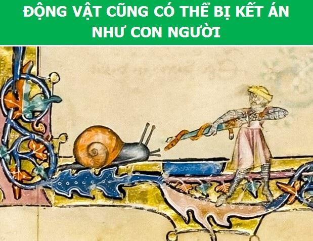 Người Trung Cổ từng tin rằng có người tí hon sống trong tinh trùng của nam giới - 4