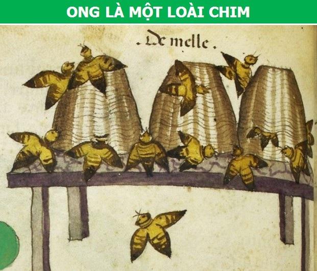 Người Trung Cổ từng tin rằng có người tí hon sống trong tinh trùng của nam giới - 2