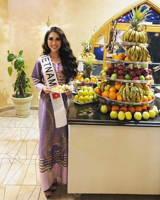 Năm nay, vòng chung kết Miss Intercontinental 2017 đã được khởi động từ ngày 11/01/2018 và đêm chung kết sẽ diễn ra vào tối ngày 24/01/2018 (theo giờ địa phương) tại thành phố biển xinh đẹp Hurghada (Ai Cập).