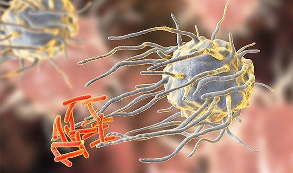 Khám phá virus trong không gian là chìa khóa tìm kiếm sự sống trong vũ trụ - 2