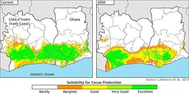 Vùng sản xuất cacao được đẩy lên hàng nghìn feet vào vùng địa hình đồi núi nơi bảo tồn động vật hoang dã vào năm 2050.