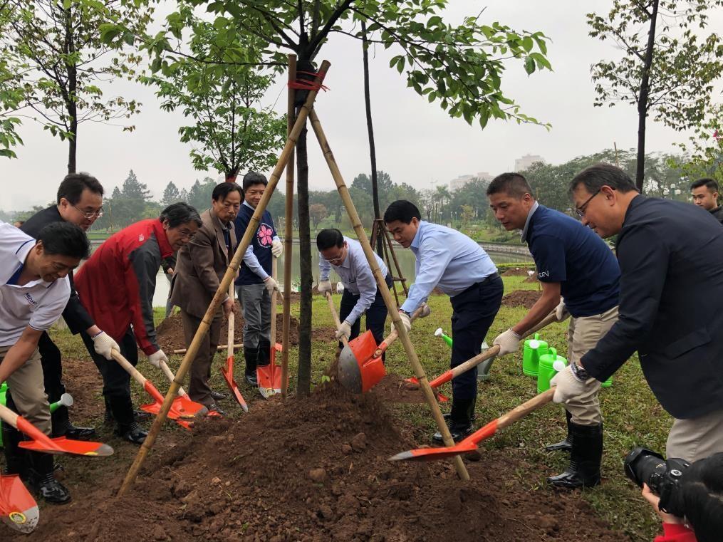 AEON và hành trình mang hoa anh đào Nhật bản về Việt Nam