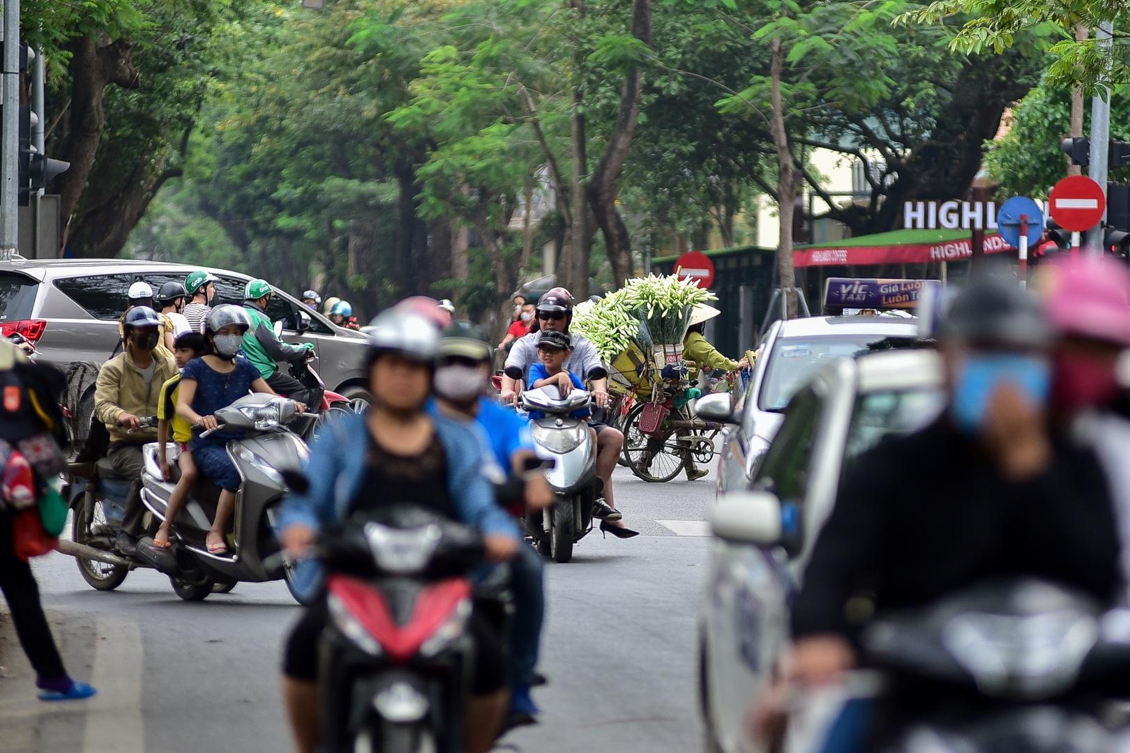 Tháng tư về, hoa loa kèn tinh khôi xuống phố Hà Nội - 10