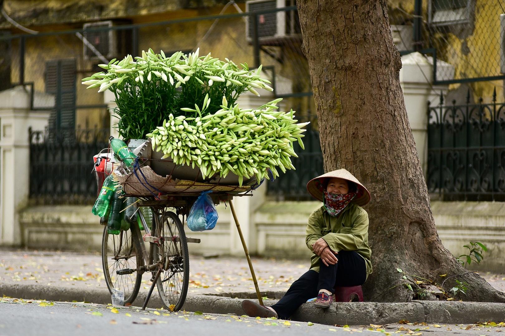 Tháng tư về, hoa loa kèn tinh khôi xuống phố Hà Nội - 8