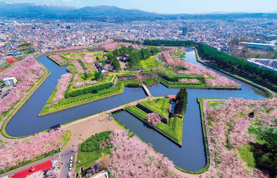 Tuyệt sắc hoa anh đào giữa đất trời Hokkaido Nhật Bản - 1