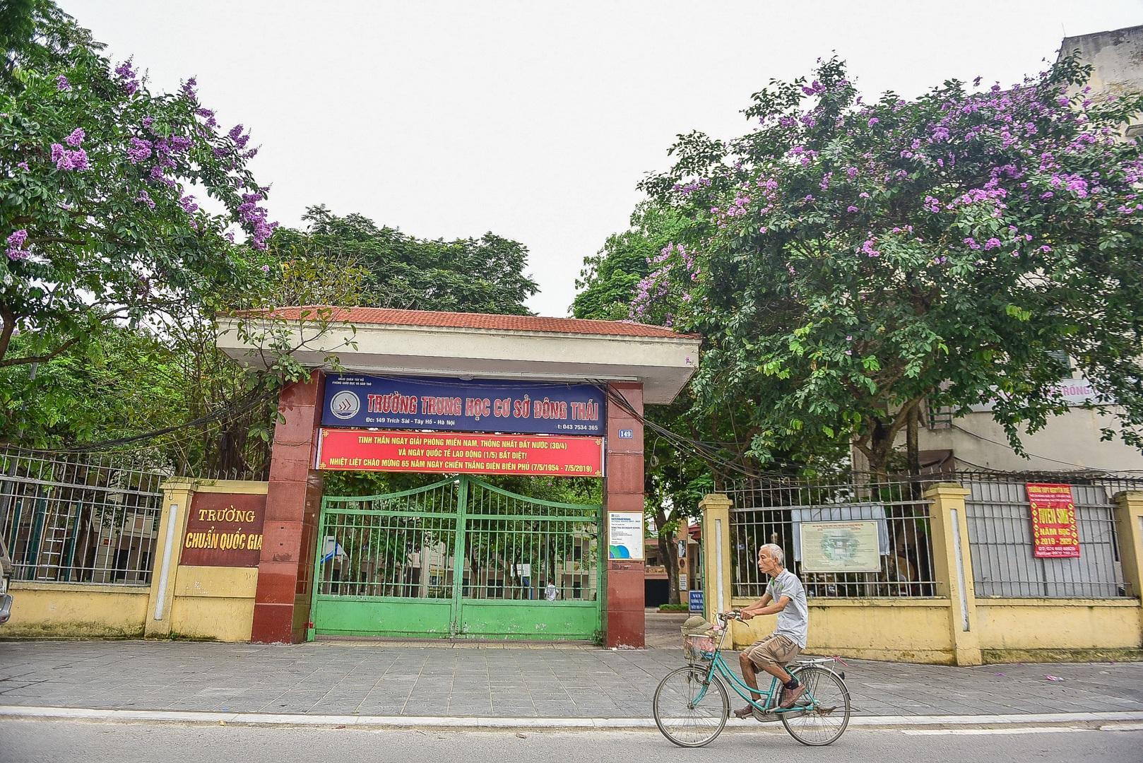 Hoa bằng lăng mộng mơ nhuộm tím đường phố Hà Nội - 13